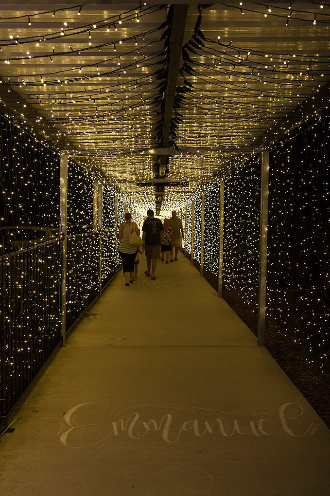 Christmas Tunnel of Light 1