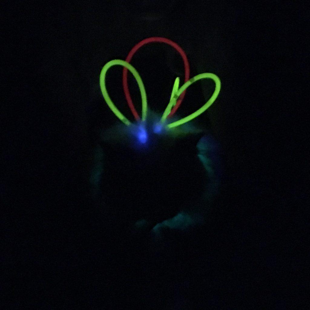 Glow Stick Cat