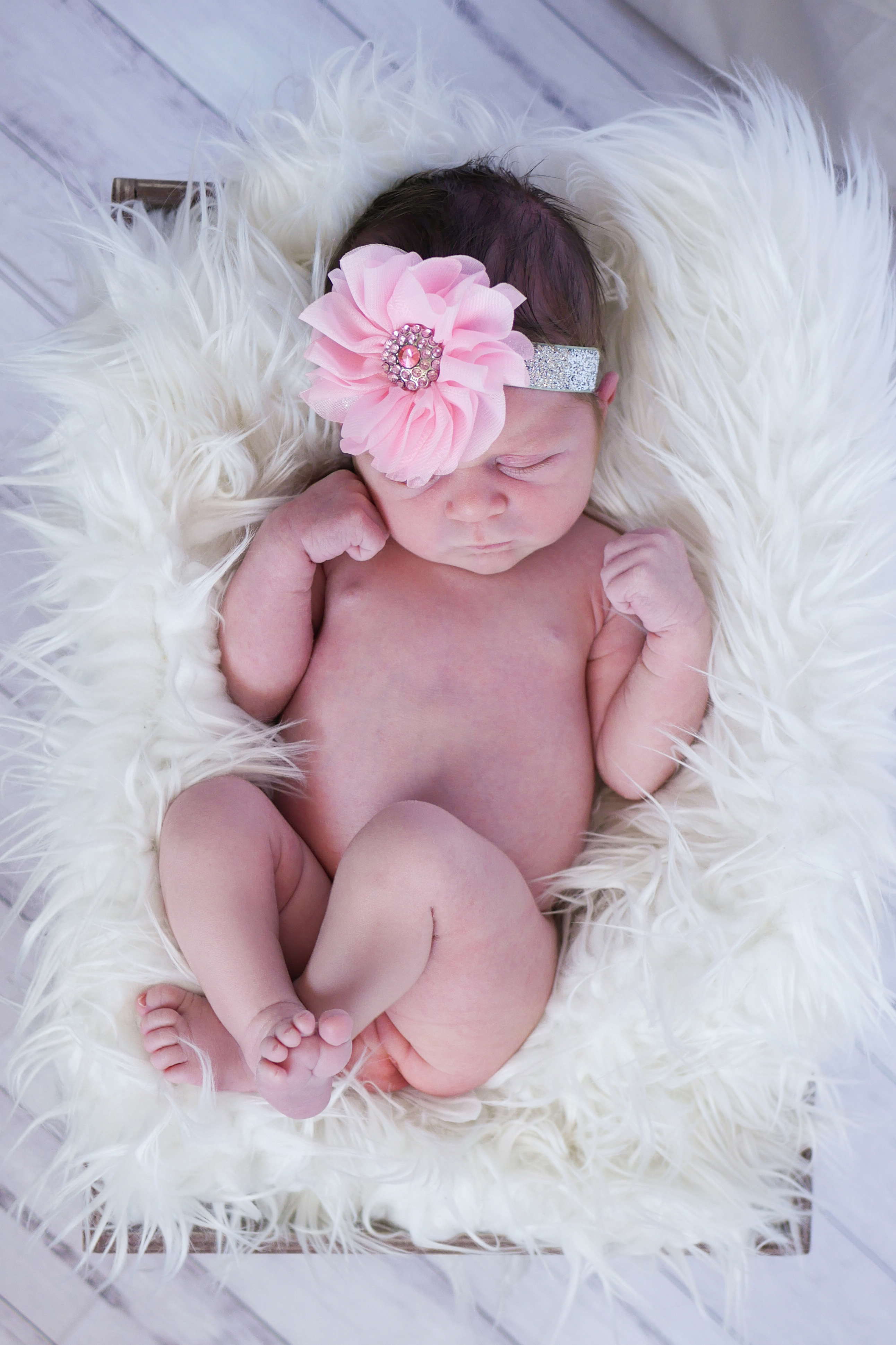 Newborn Photography 4