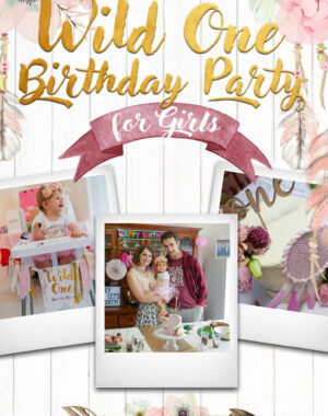 Wild One Birthday Party For Girls